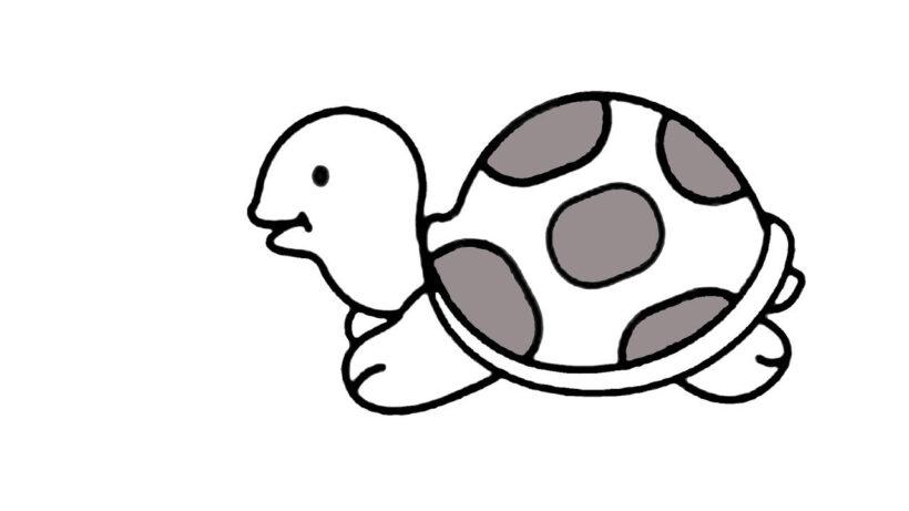 Tranh vẽ chưa tô màu con rùa đẹp cho bé tập tô (1)