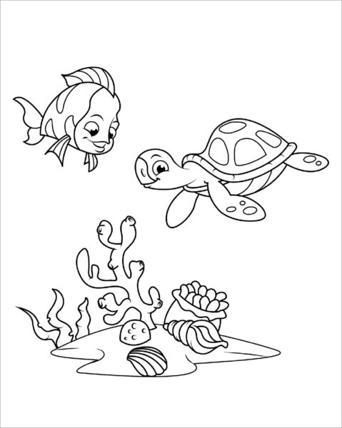 Tranh vẽ chưa tô màu con rùa đẹp cho bé tập tô (6)