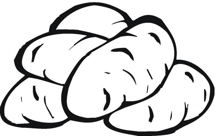 Tranh vẽ chưa tô màu củ khoai lang đơn giản cho bé tập tô (8)