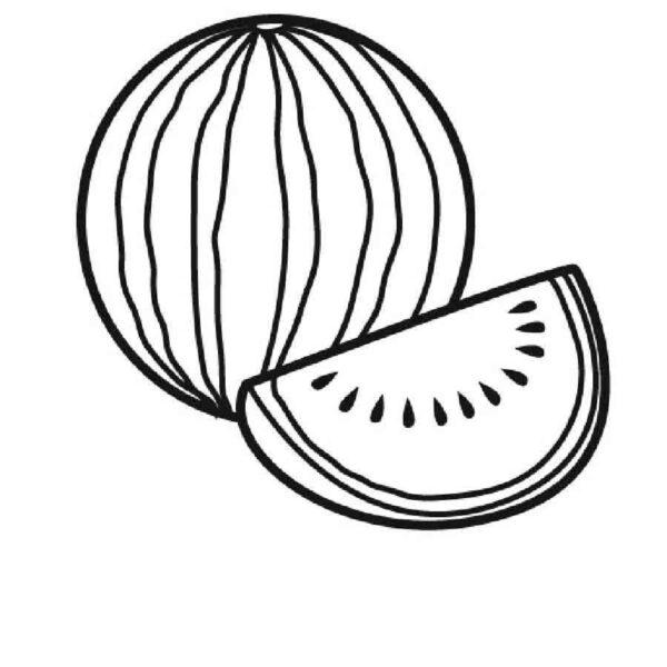 Tranh vẽ chưa tô màu quả dưa hấu cho bé tập tô (5)