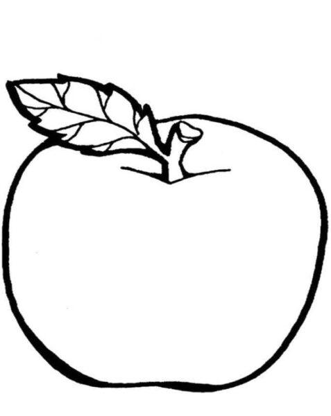 Tranh vẽ chưa tô màu rau củ quả cho bé tập tô (1)
