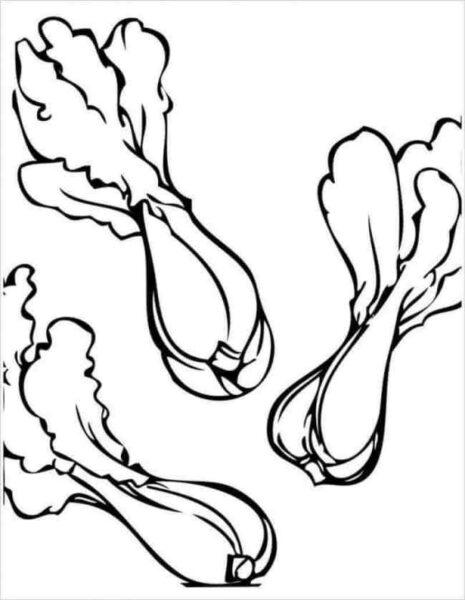 Tranh vẽ chưa tô màu rau củ quả cho bé tập tô (4)