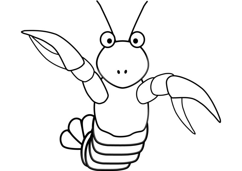 Tranh vẽ đen trắng con tôm cho bé tô màu (3)