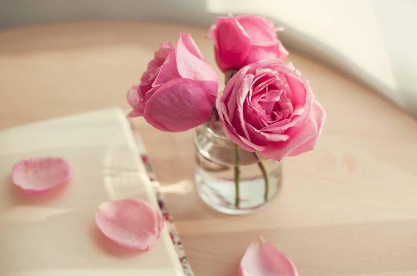 Hình ảnh hoa hồng trứng được cắm trong bình nhỏ dễ thương