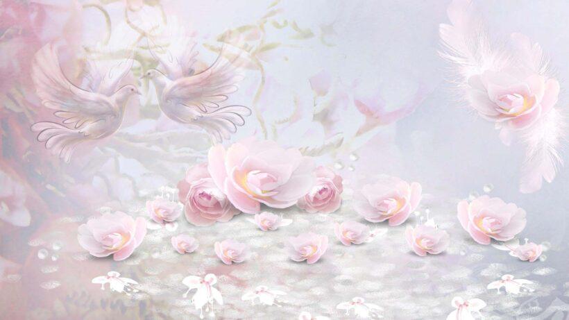 Hình nền màu hồng dễ thương, nhẹ nhàng