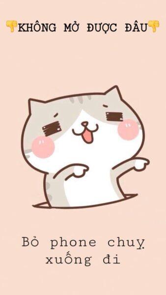 Hình nền mở khóa điện thoại mèo cute