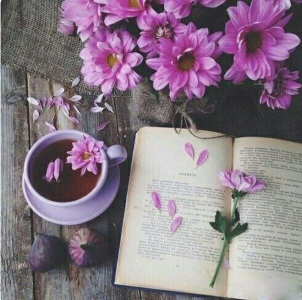 Ảnh cánh hoa rụng bên ly cà phê làm quotes buồn