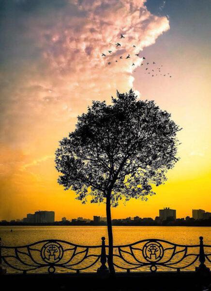 Ảnh Hồ Tây Hà Nội