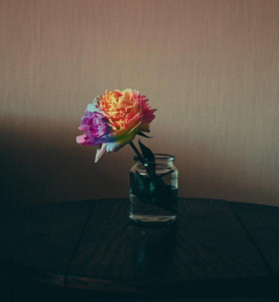 Ảnh làm quotes hoa đẹp