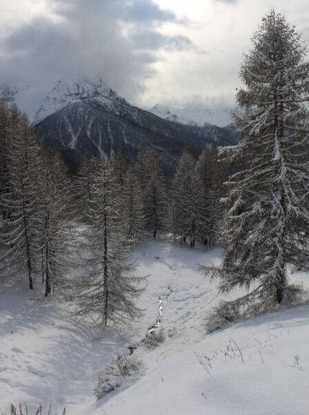 Ảnh nền mùa đông lạnh đẹp