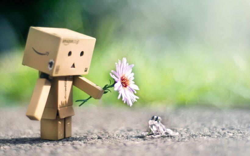 Ảnh người gỗ cầm hoa tặng ếch