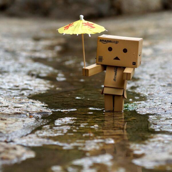 Ảnh người gỗ cầm ô dễ thương