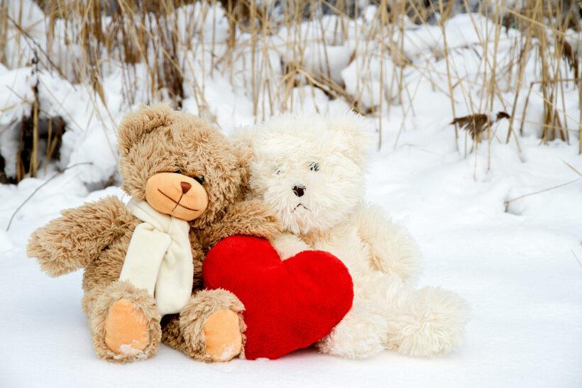 Các loại gấu bông dễ thương
