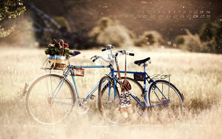 hình ảnh 2 chiếc xe đạp cạnh nhau trên cánh đồng cỏ đầy kỷ niệm