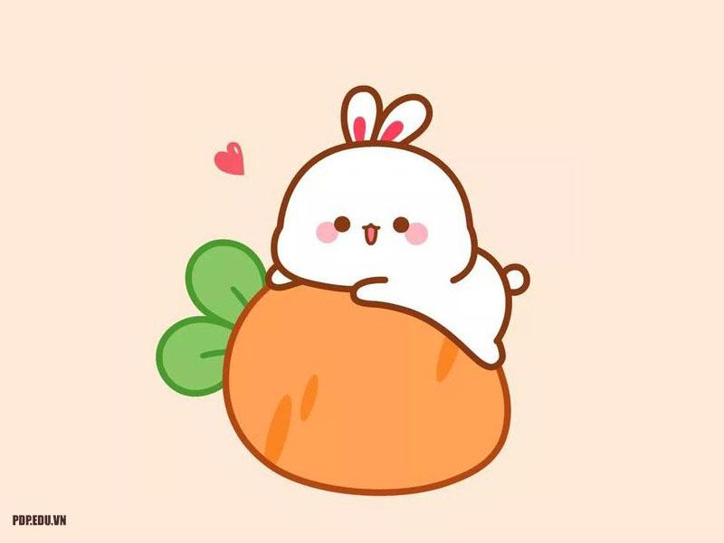 hình ảnh avatar dễ thương cute nhất