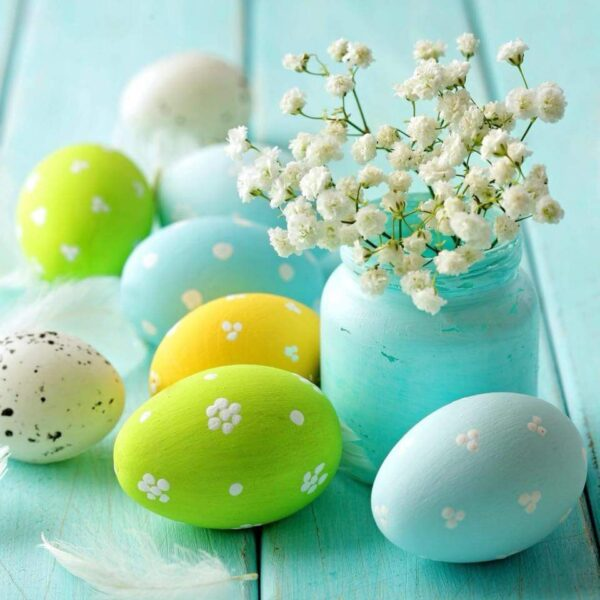 Hình ảnh avatar những quả trứng dễ thương