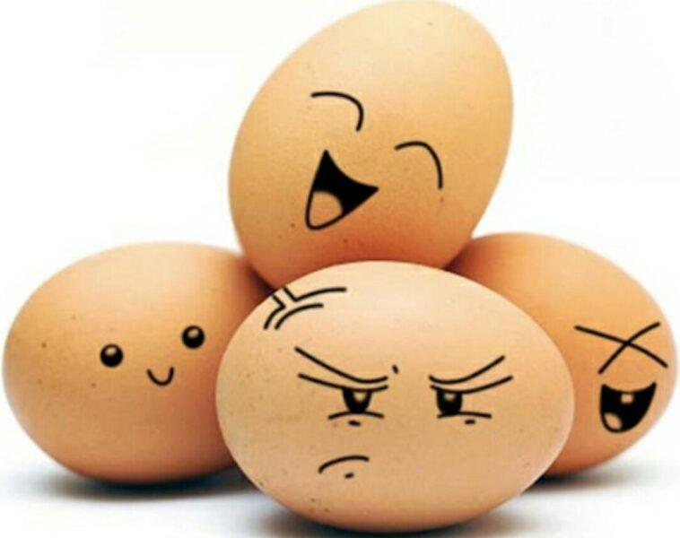 Hình ảnh avatar những quả trứng dễ thương, ngộ nghĩnh