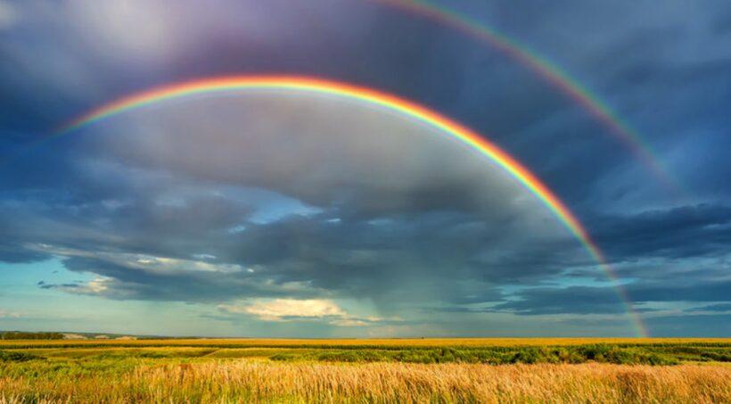 hình ảnh cầu vồng trên cánh đồng lúa