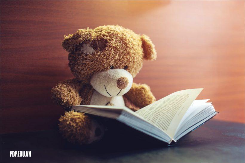 hình ảnh gấu bông đẹp nhất