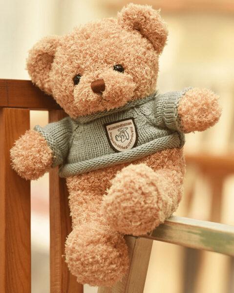 hình ảnh gấu bông đẹp nhất - gấu teddy