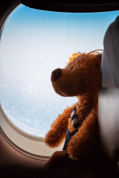hình ảnh gấu bông đẹp nhất trên máy bay