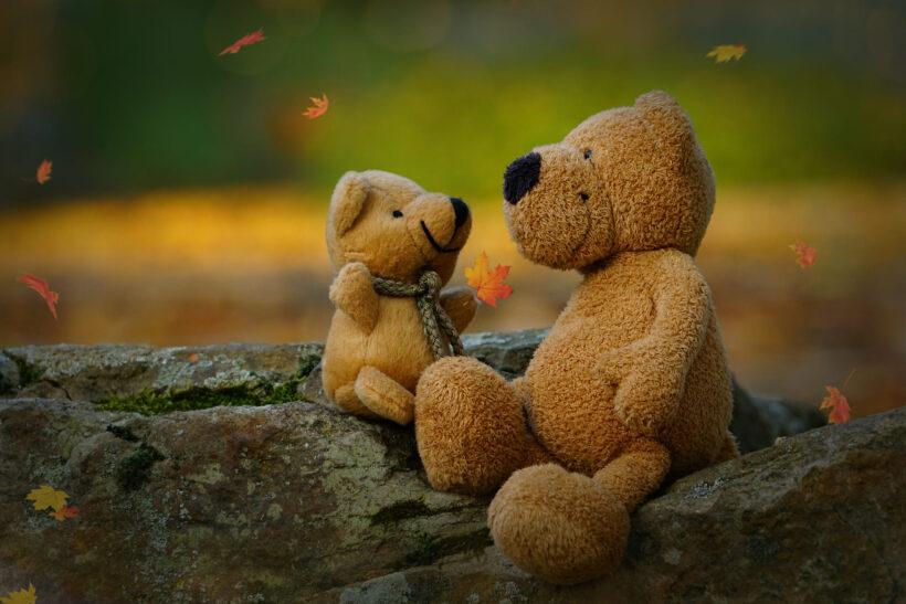 hình ảnh gấu bông đẹp và dễ thương nhất
