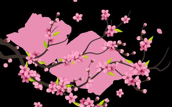 hình ảnh hoa đào png