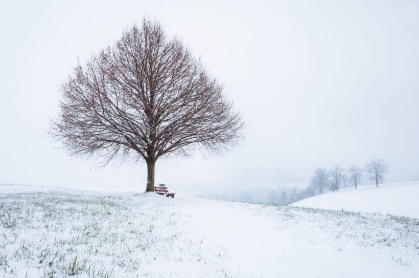 Hình ảnh mùa đông tuyệt đẹp