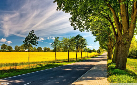 hình ảnh mùa hè đẹp