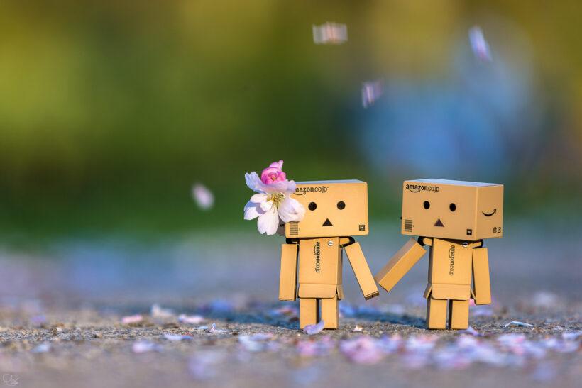 Hình ảnh người gỗ và người yêu cực đẹp