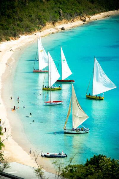 hình ảnh những con thuyền buồm chở khách du lịch trên biển