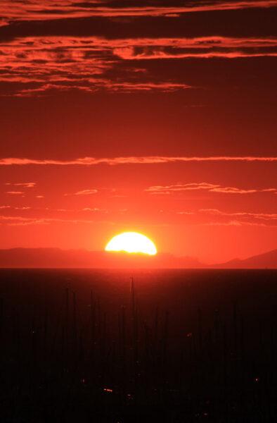 hình ảnh ông mặt trời đẹp độc đáo