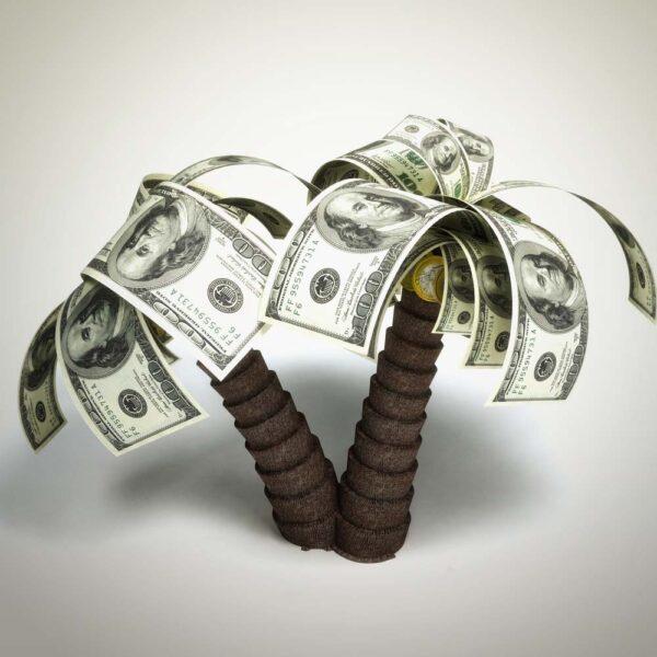 Hình ảnh tiền tạo thành lá cây