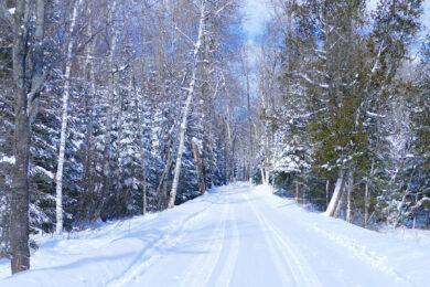 hình ảnh tuyết rơi đẹp nhất