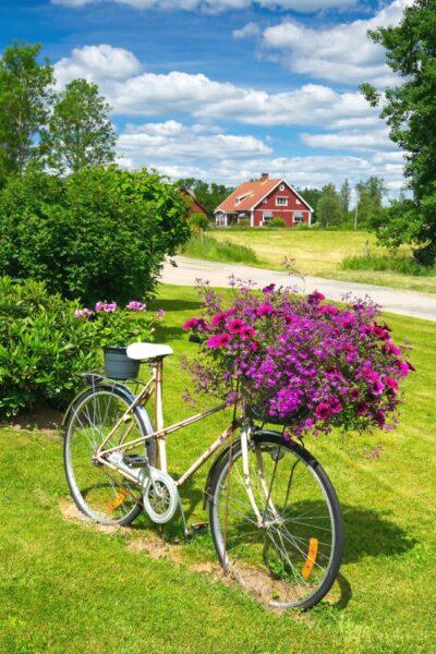 hình ảnh xe đạp và giỏ hoa trang trí trong vườn