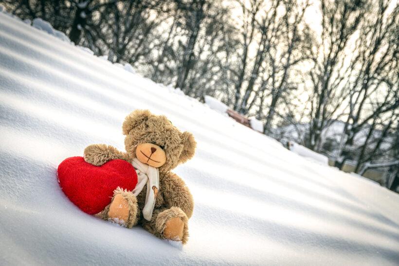 Hình gấu bông cute