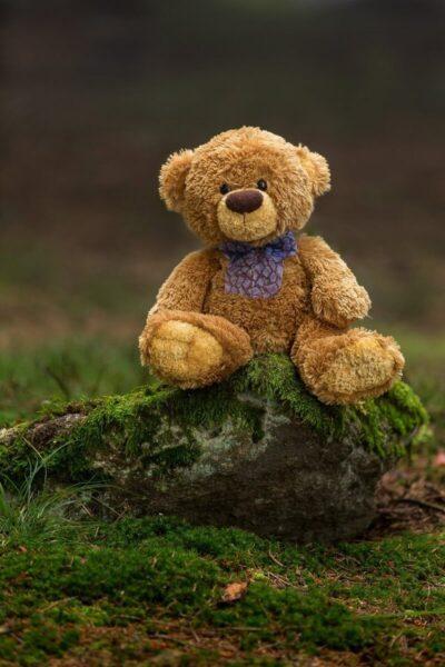 hình nền gấu bông đẹp cho điện thoại