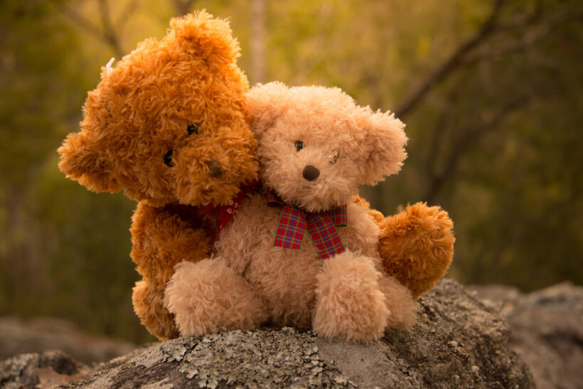 Hình nền gấu bông đẹp nhất