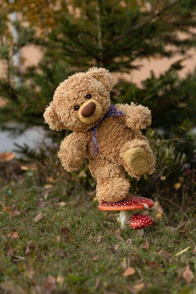hình nền gấu bông ngộ nghĩnh đứng trên cây nấm