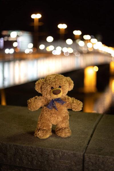 hình nền gấu bông trên cầu đẹp cho iphone