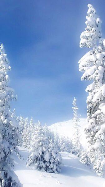 hình nền mùa đông cho iphone