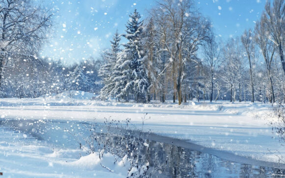 hình nền mùa đông có tuyết trắng phủ đầy