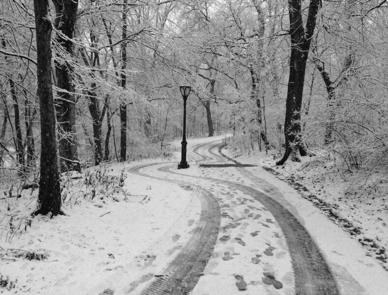hình nền mùa đông tuyết phủ đầy con đường và khu rừng