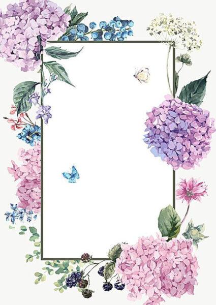 khung hình đẹp - khung hoa cẩm tú cầu