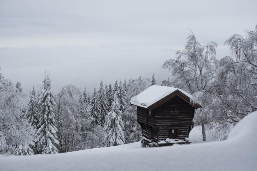 Tải hình ảnh mùa đông lạnh giá