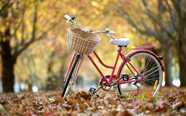 tổng hợp hình ảnh xe đạp đẹp độc lạ (1)