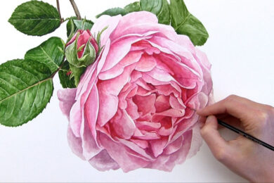 tranh vẽ hoa hồng