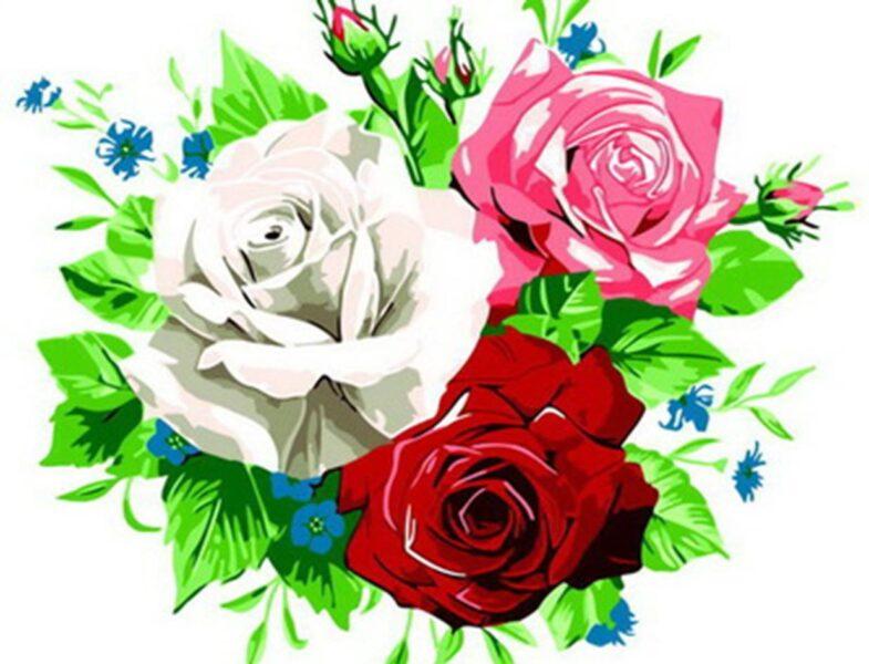 Tranh vẽ hoa hồng bằng màu
