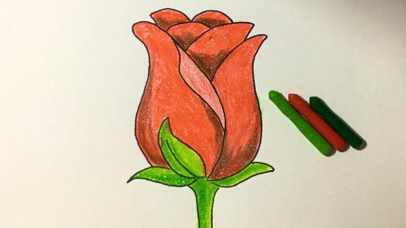 Tranh vẽ hoa hồng bằng sáp màu