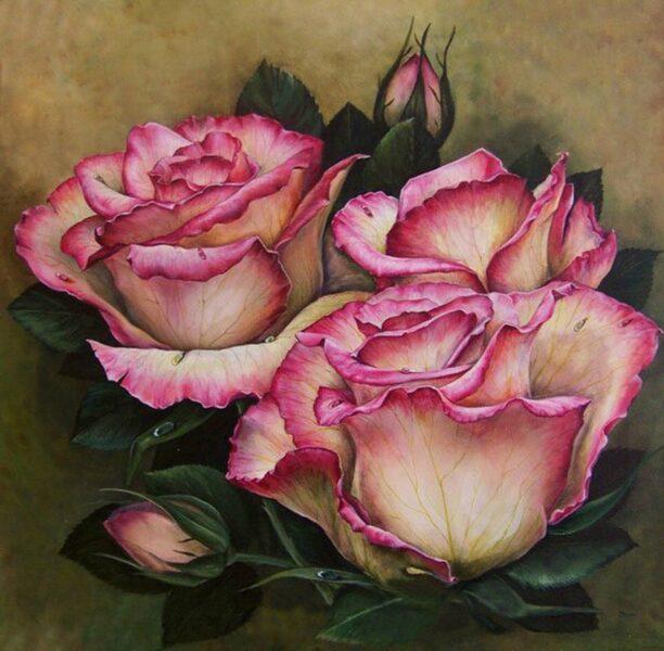 Tranh vẽ hoa hồng đẹp nhất